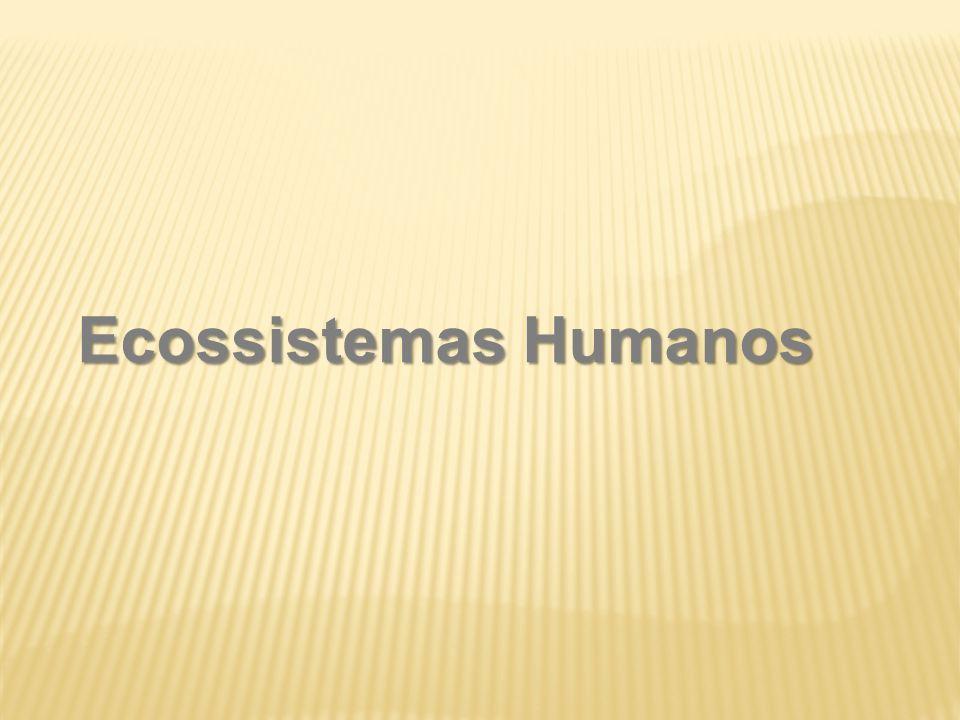 Ecossistemas Humanos