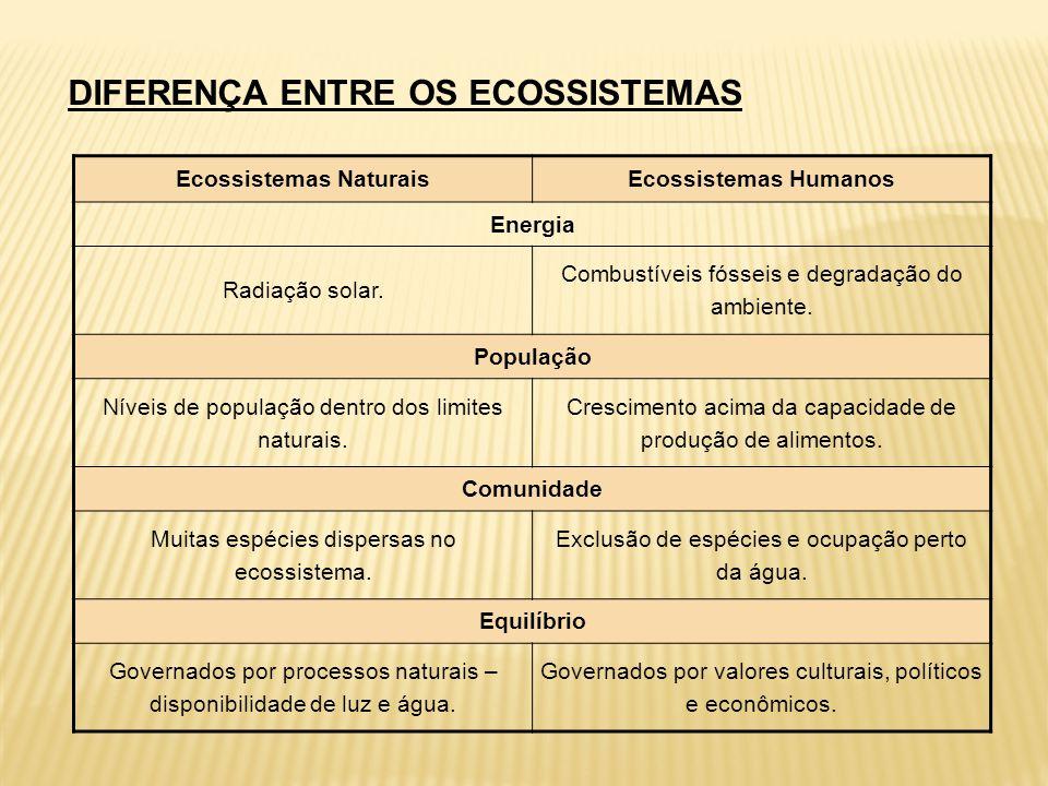 Ecossistemas Naturais