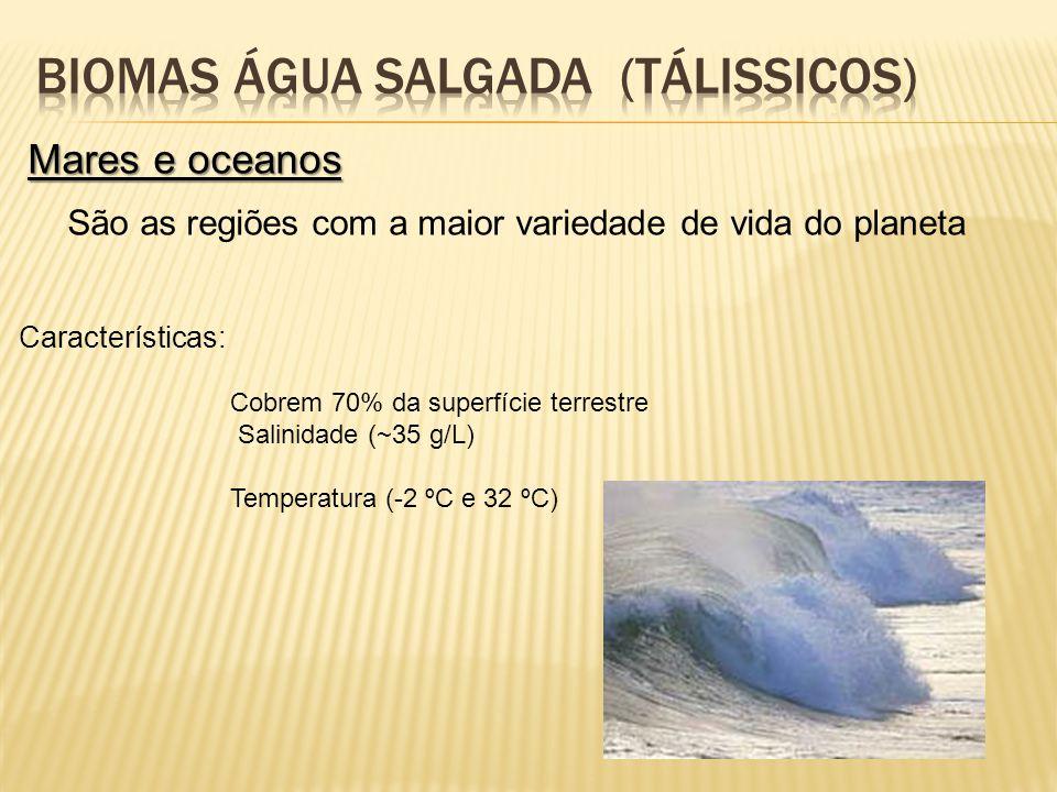 BIOMAS ÁGUA SALGADA (TÁLISSICOS)