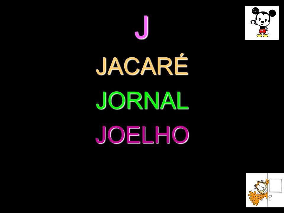 J JACARÉ JORNAL JOELHO