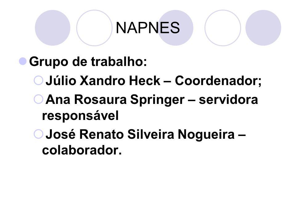 NAPNES Grupo de trabalho: Júlio Xandro Heck – Coordenador;