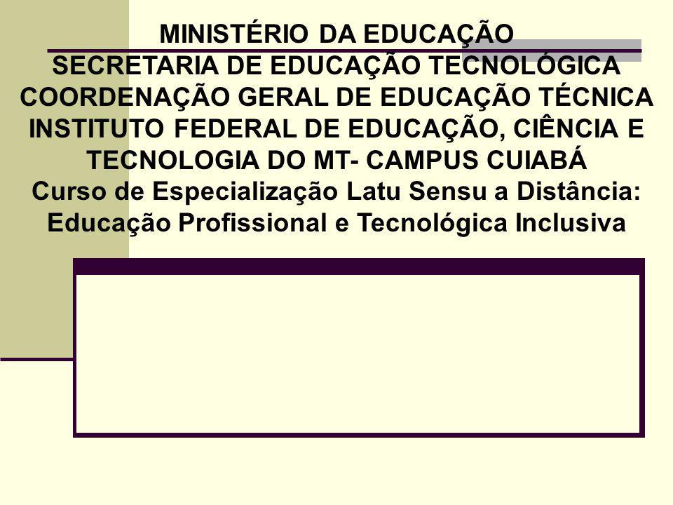 MINISTÉRIO DA EDUCAÇÃO SECRETARIA DE EDUCAÇÃO TECNOLÓGICA