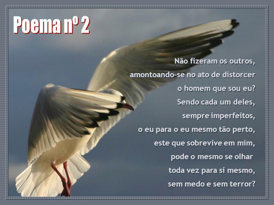 Poema nº 2 Não fizeram os outros, amontoando-se no ato de distorcer