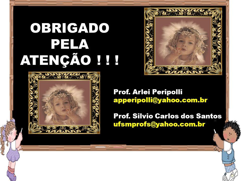 OBRIGADO PELA ATENÇÃO ! ! ! Prof. Arlei Peripolli