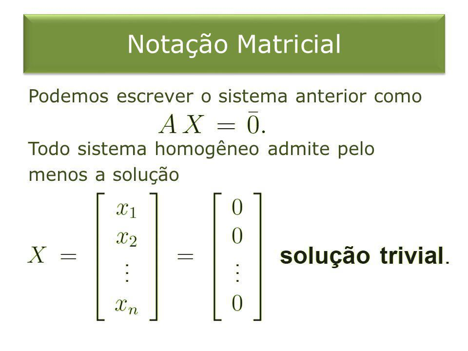 Notação Matricial Podemos escrever o sistema anterior como Todo sistema homogêneo admite pelo menos a solução