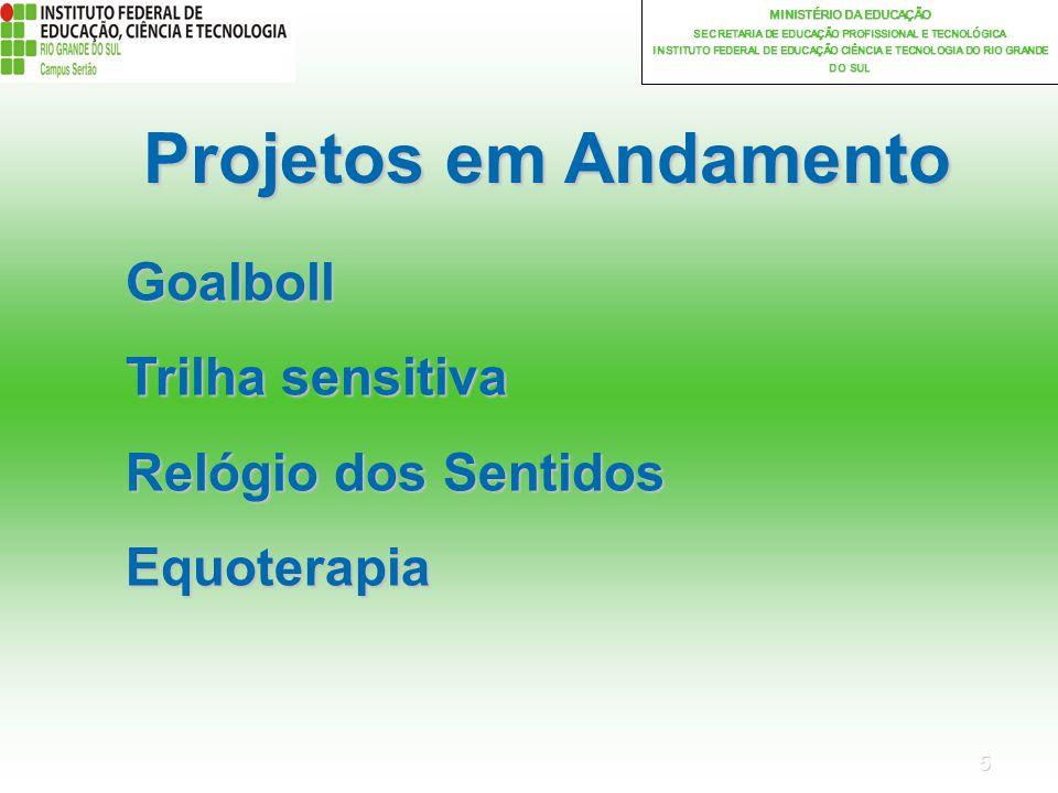 Projetos em Andamento Goalboll Trilha sensitiva Relógio dos Sentidos