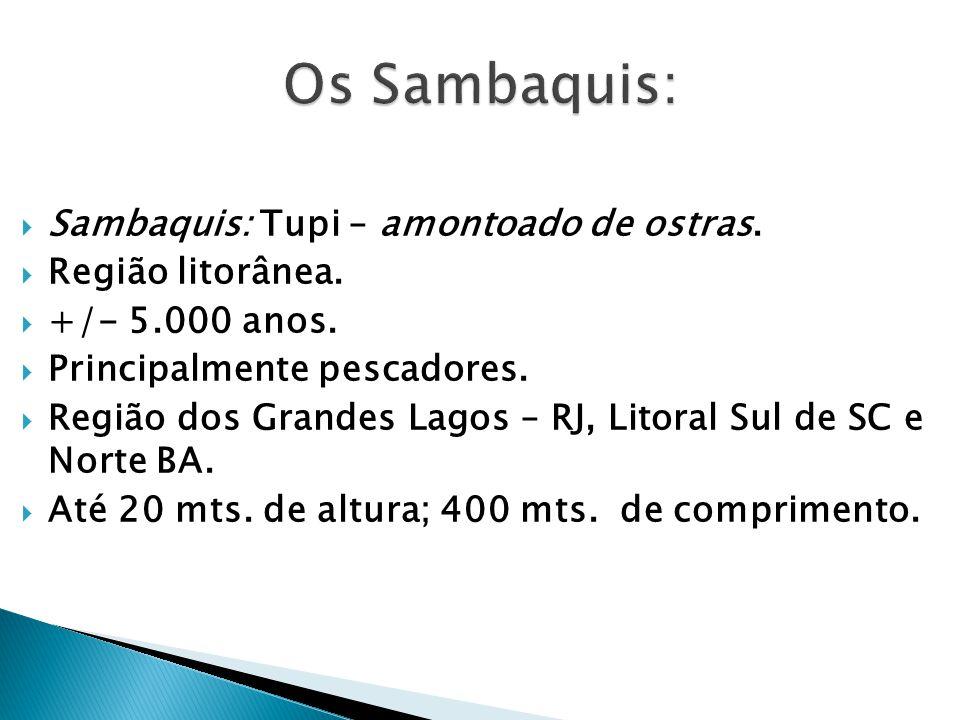 Os Sambaquis: Sambaquis: Tupi – amontoado de ostras. Região litorânea.