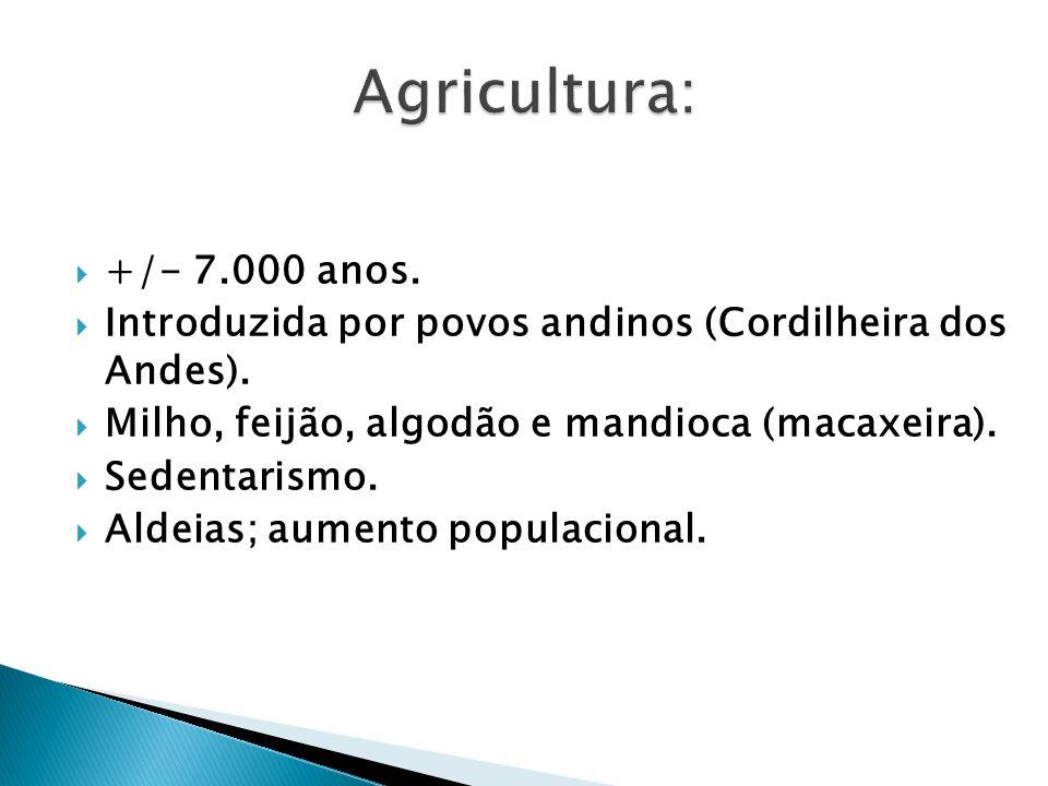 Agricultura: +/- 7.000 anos. Introduzida por povos andinos (Cordilheira dos Andes). Milho, feijão, algodão e mandioca (macaxeira).