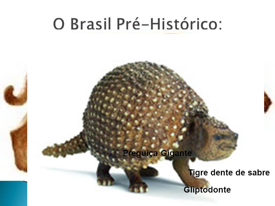 O Brasil Pré-Histórico: