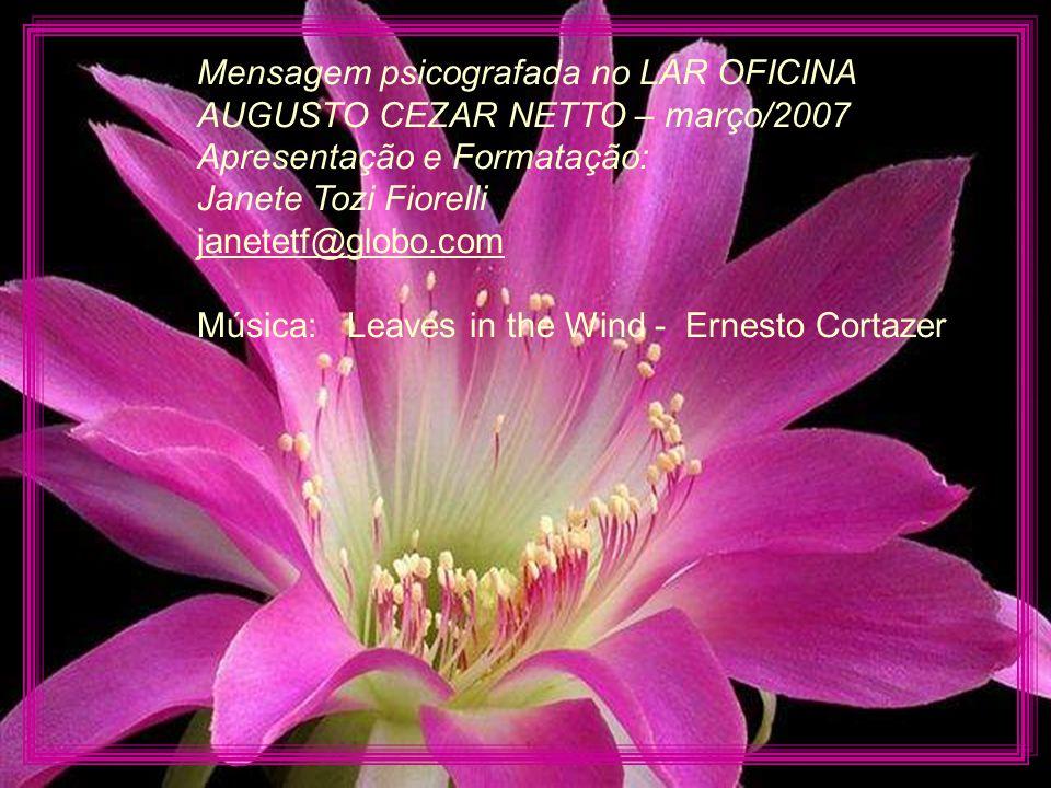 Mensagem psicografada no LAR OFICINA AUGUSTO CEZAR NETTO – março/2007