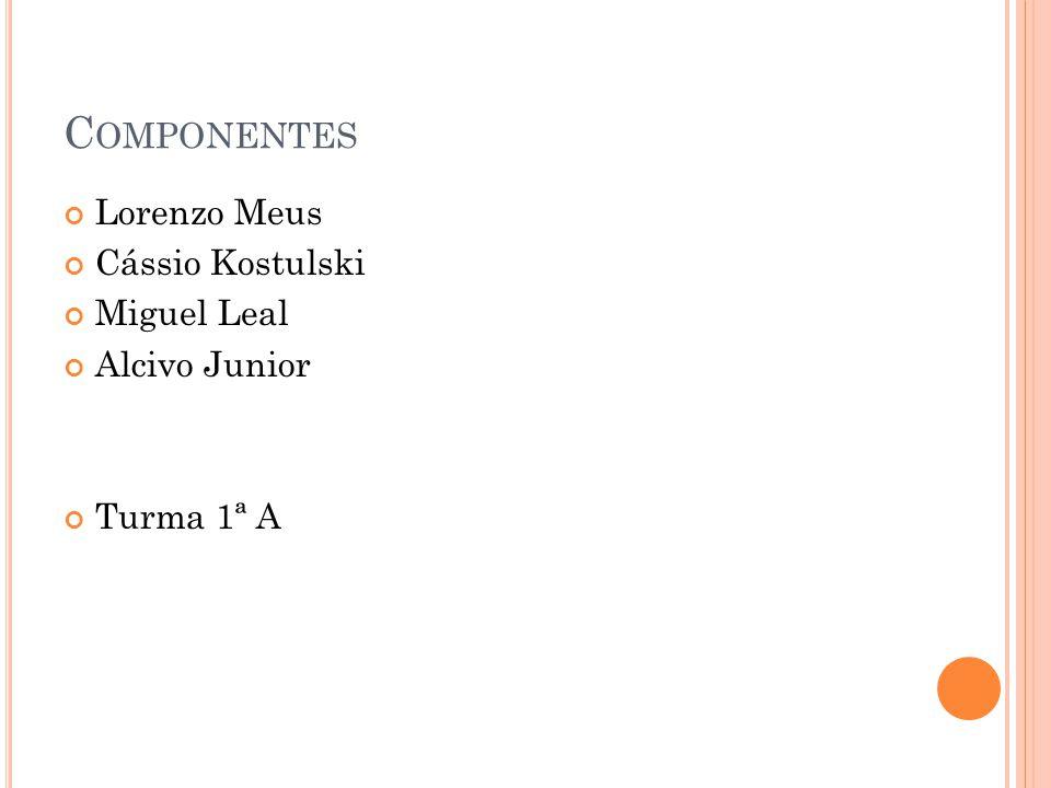 Componentes Lorenzo Meus Cássio Kostulski Miguel Leal Alcivo Junior