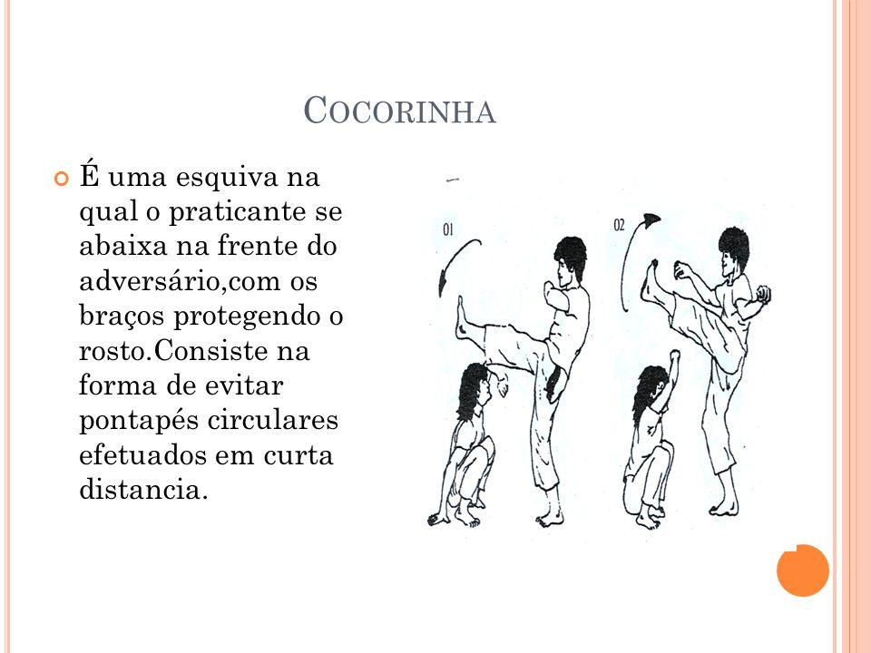 Cocorinha