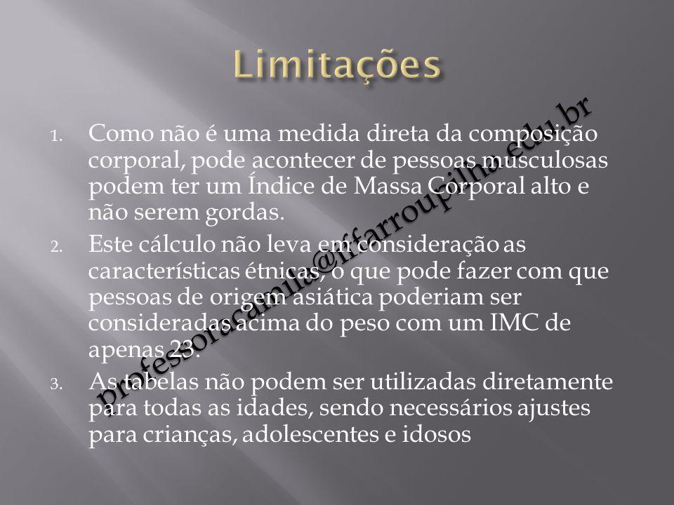 Limitações professoracamila@iffarroupilha.edu.br