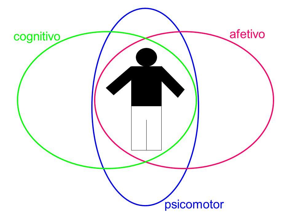 afetivo cognitivo psicomotor