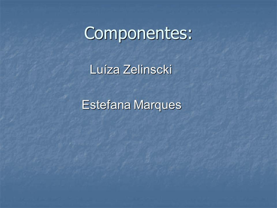 Componentes: Luíza Zelinscki Estefana Marques