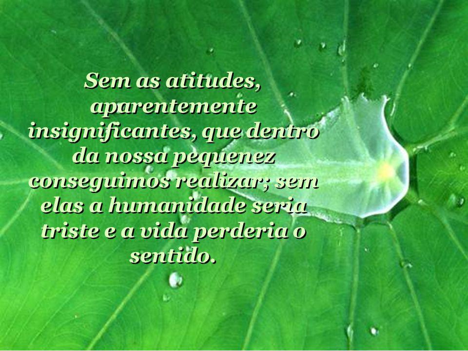 Sem as atitudes, aparentemente insignificantes, que dentro da nossa pequenez conseguimos realizar; sem elas a humanidade seria triste e a vida perderia o sentido.