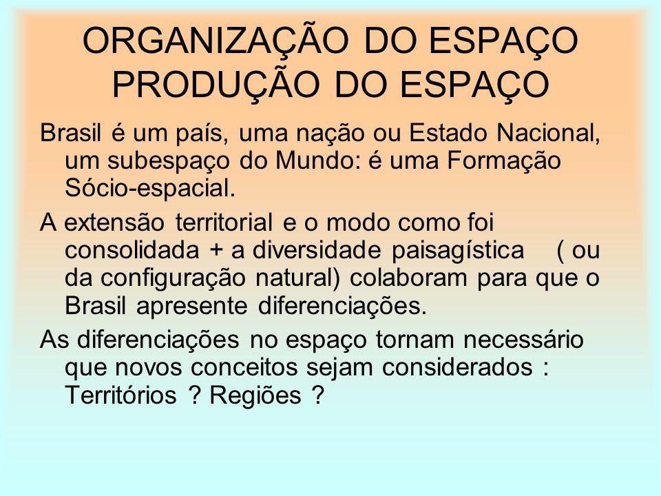 ORGANIZAÇÃO DO ESPAÇO PRODUÇÃO DO ESPAÇO
