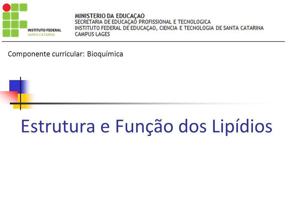 Estrutura e Função dos Lipídios