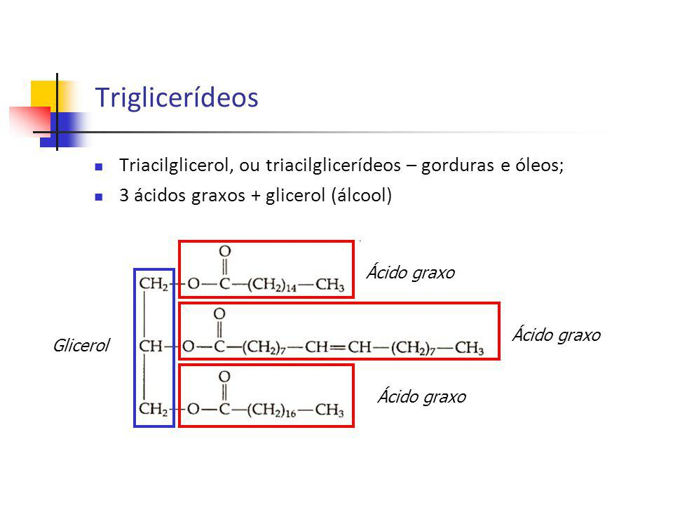 Triglicerídeos Triacilglicerol, ou triacilglicerídeos – gorduras e óleos; 3 ácidos graxos + glicerol (álcool)