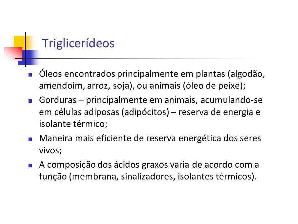 Triglicerídeos Óleos encontrados principalmente em plantas (algodão, amendoim, arroz, soja), ou animais (óleo de peixe);