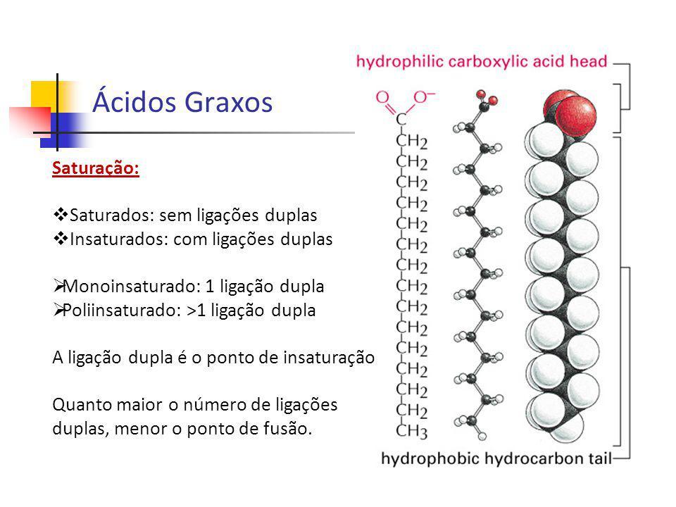 Ácidos Graxos Saturação: Saturados: sem ligações duplas
