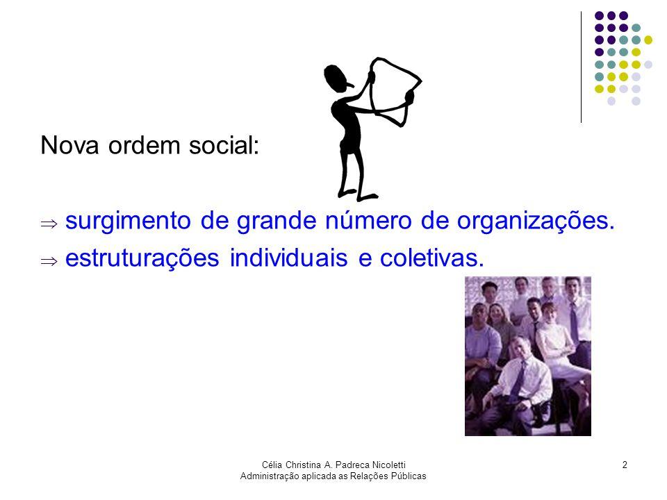 surgimento de grande número de organizações.
