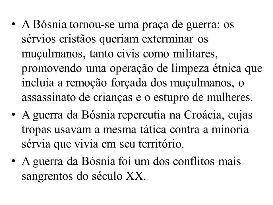 A Bósnia tornou-se uma praça de guerra: os sérvios cristãos queriam exterminar os muçulmanos, tanto civis como militares, promovendo uma operação de limpeza étnica que incluía a remoção forçada dos muçulmanos, o assassinato de crianças e o estupro de mulheres.