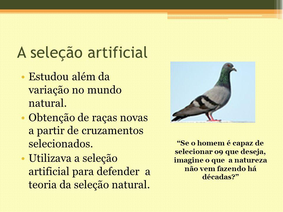 A seleção artificial Estudou além da variação no mundo natural.
