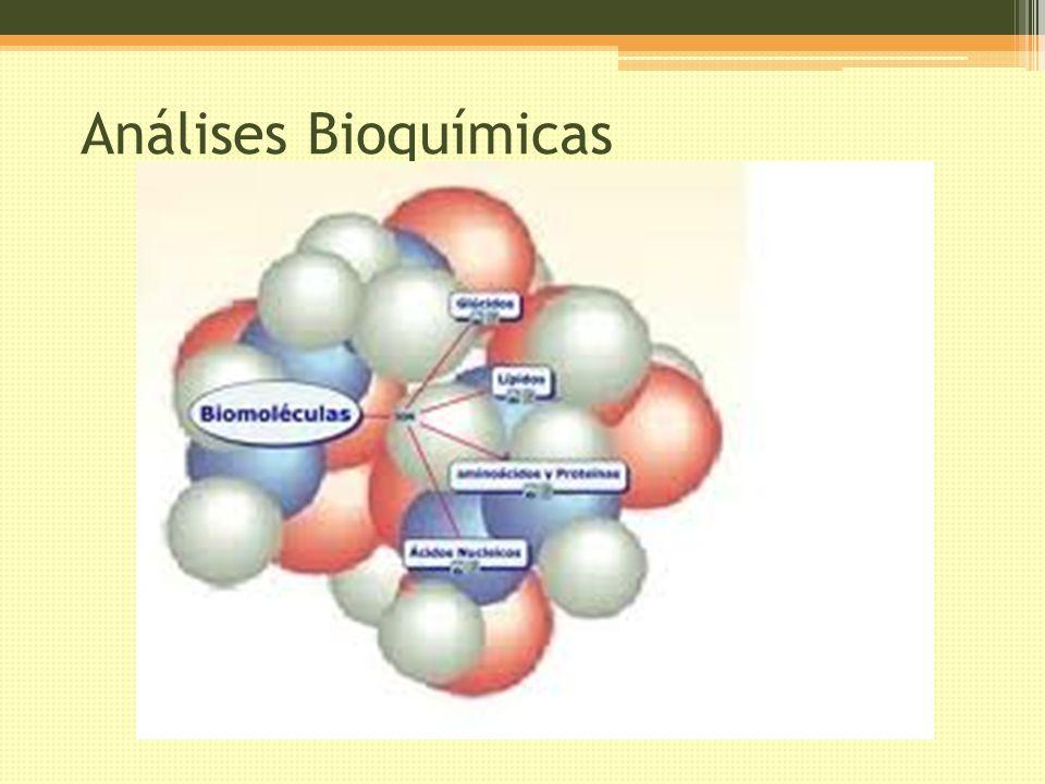 Análises Bioquímicas