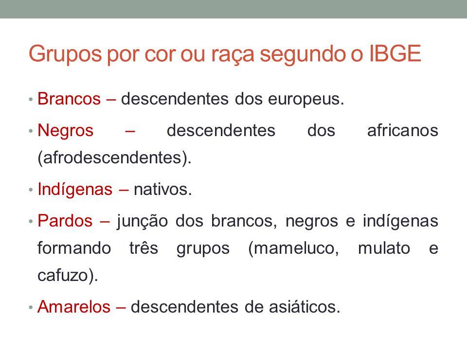 Grupos por cor ou raça segundo o IBGE