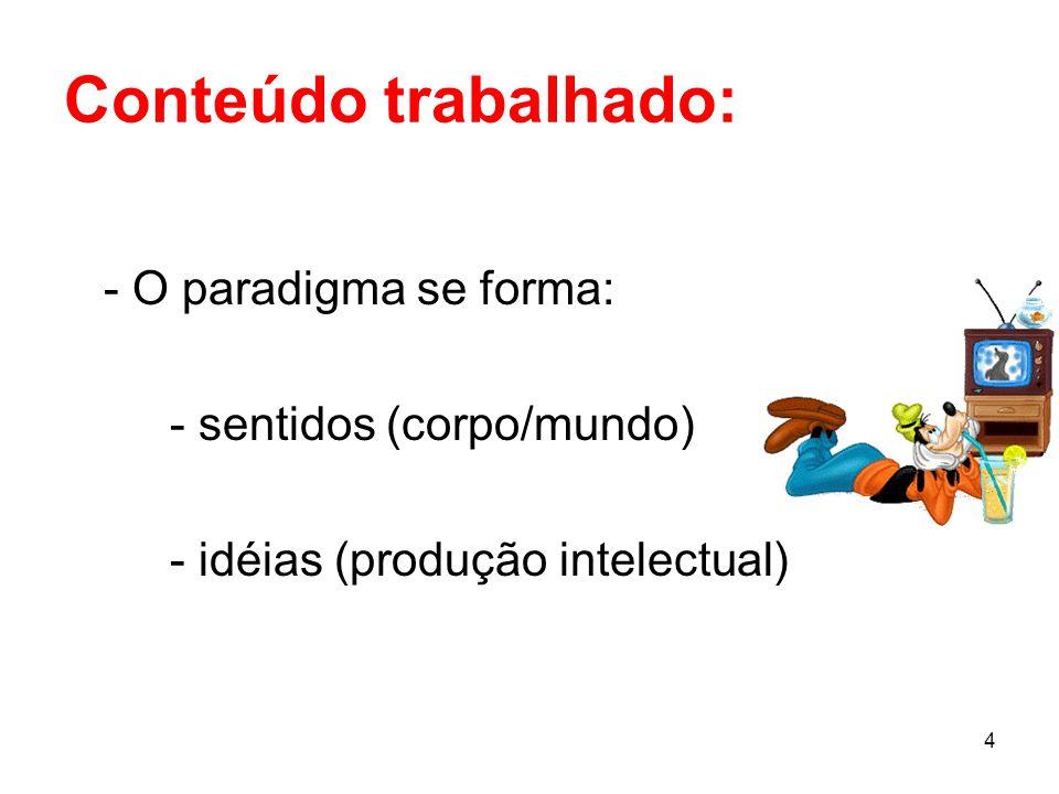 Conteúdo trabalhado: - O paradigma se forma: - sentidos (corpo/mundo)