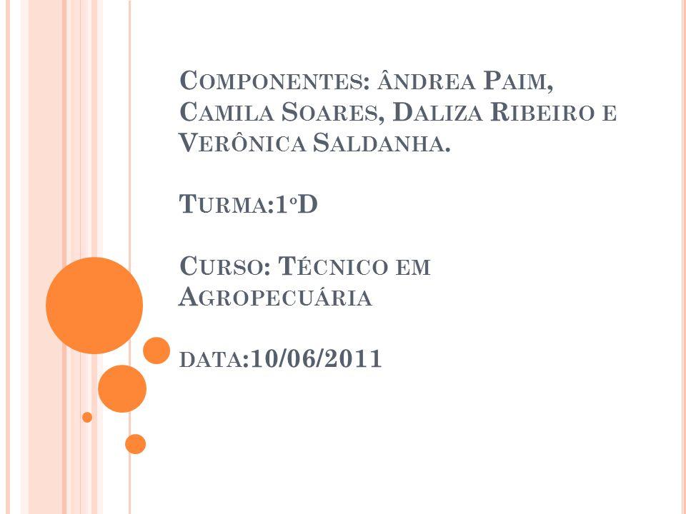 Componentes: ândrea Paim, Camila Soares, Daliza Ribeiro e Verônica Saldanha.
