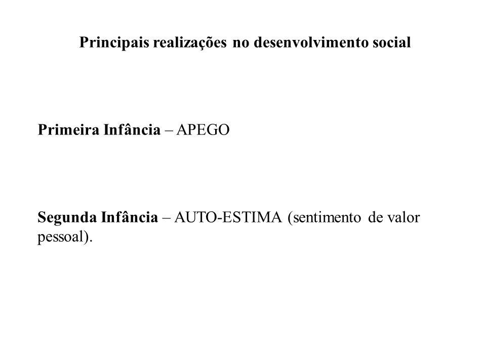 Principais realizações no desenvolvimento social