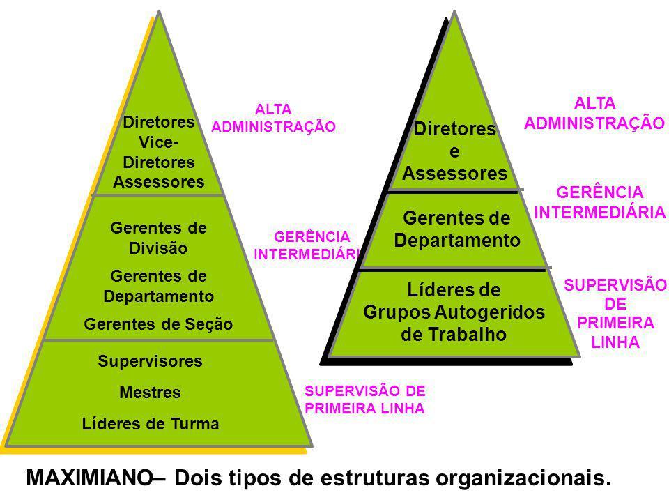 MAXIMIANO– Dois tipos de estruturas organizacionais.