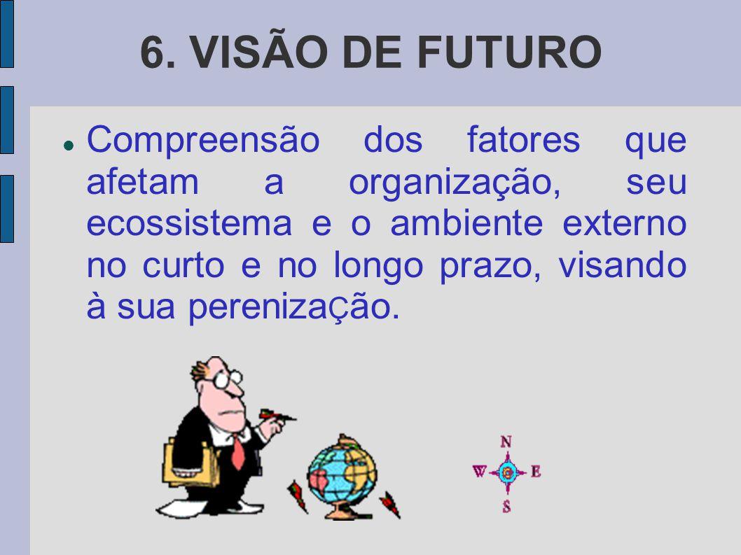 6. VISÃO DE FUTURO