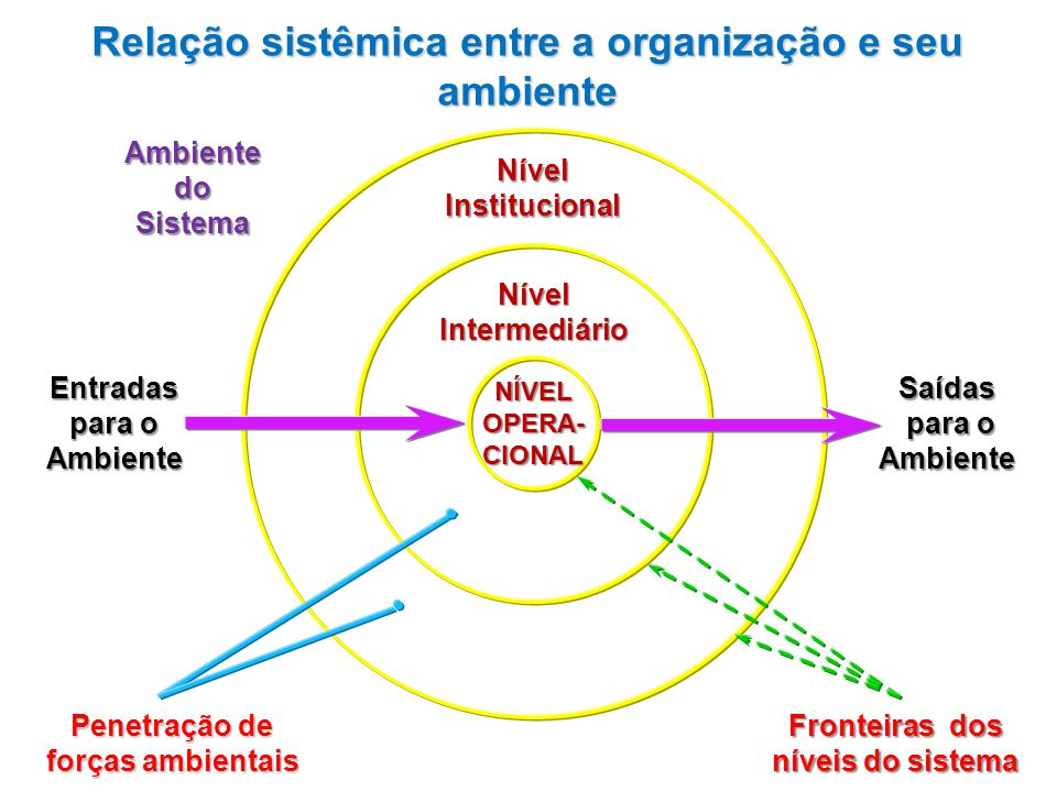 Relação sistêmica entre a organização e seu ambiente