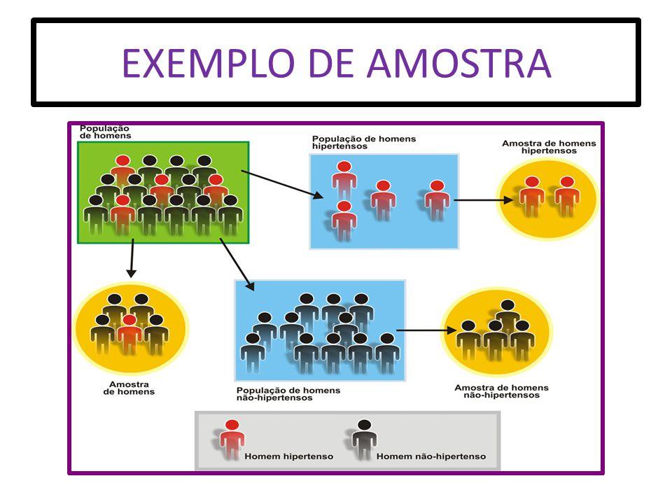 EXEMPLO DE AMOSTRA