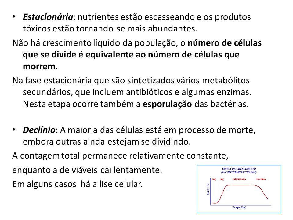 Estacionária: nutrientes estão escasseando e os produtos tóxicos estão tornando-se mais abundantes.