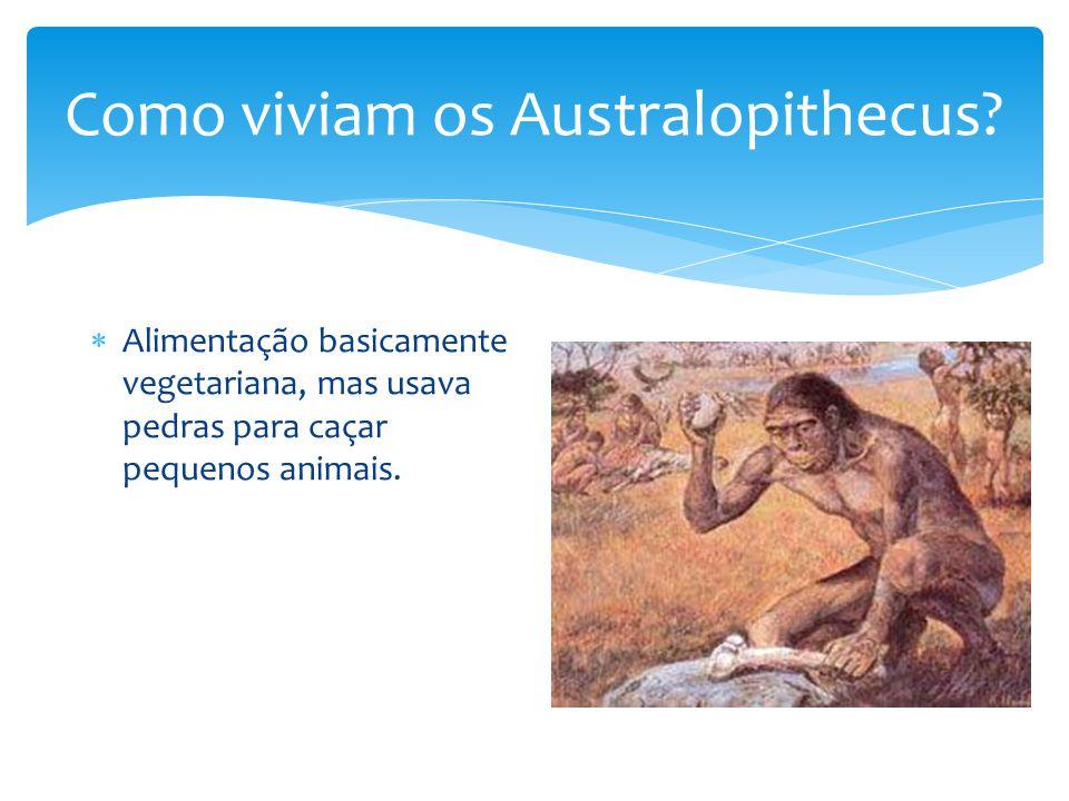 Como viviam os Australopithecus