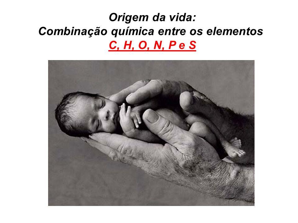 Combinação química entre os elementos