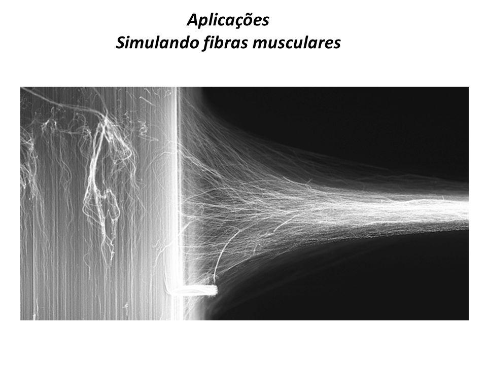 Simulando fibras musculares