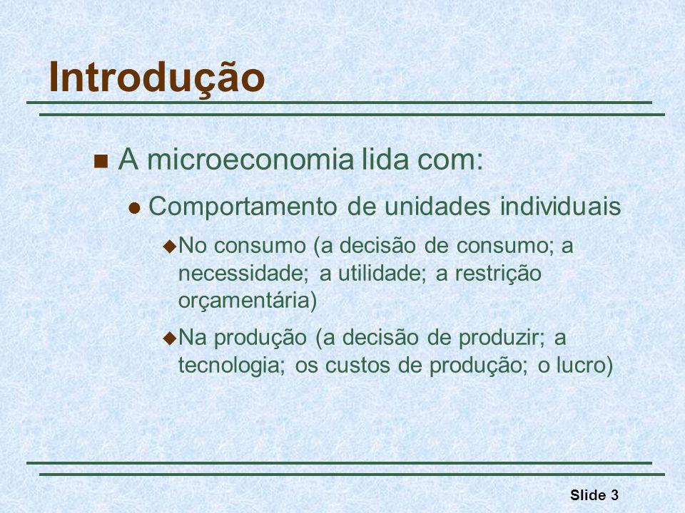 Introdução A microeconomia lida com: