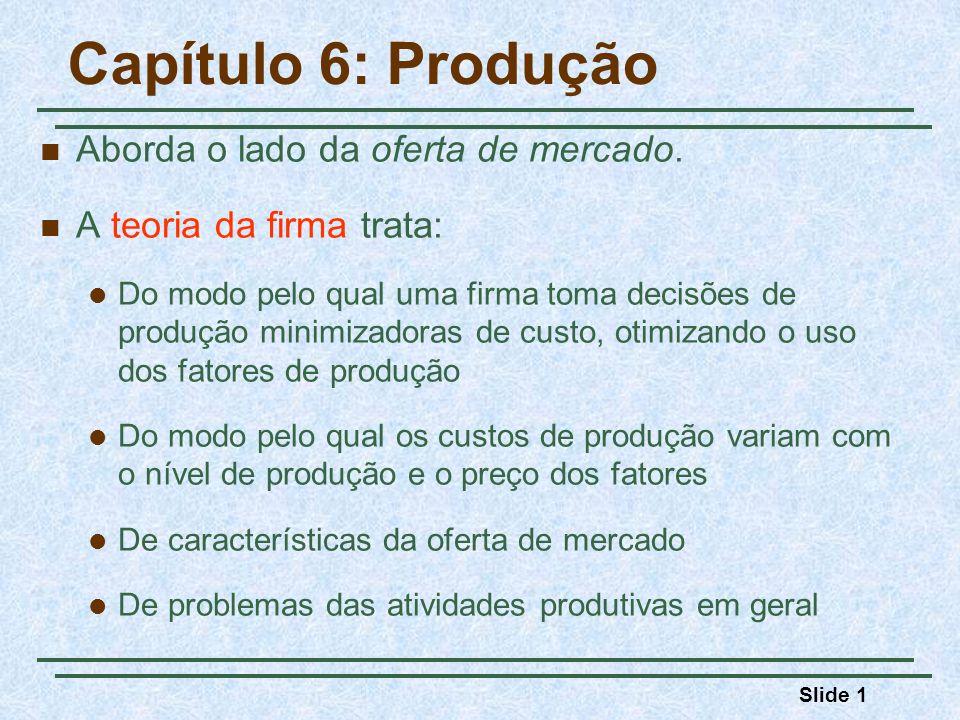 Capítulo 6: Produção Aborda o lado da oferta de mercado.