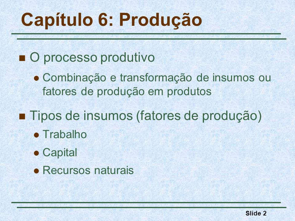 Capítulo 6: Produção O processo produtivo