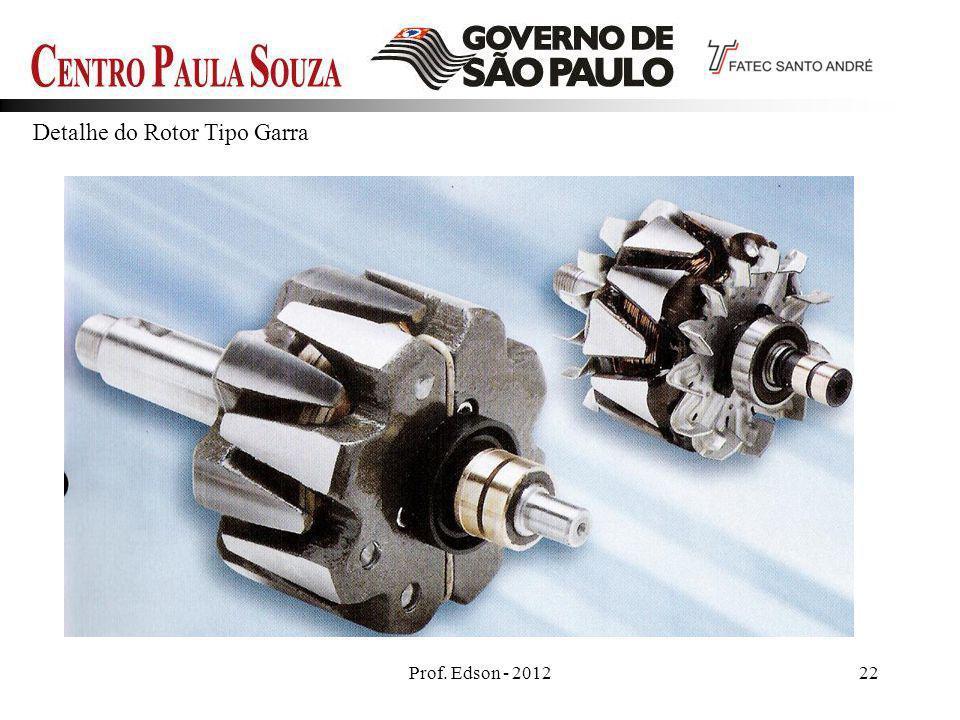 Detalhe do Rotor Tipo Garra