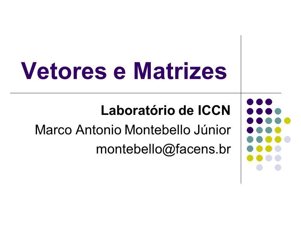 Vetores e Matrizes Laboratório de ICCN Marco Antonio Montebello Júnior