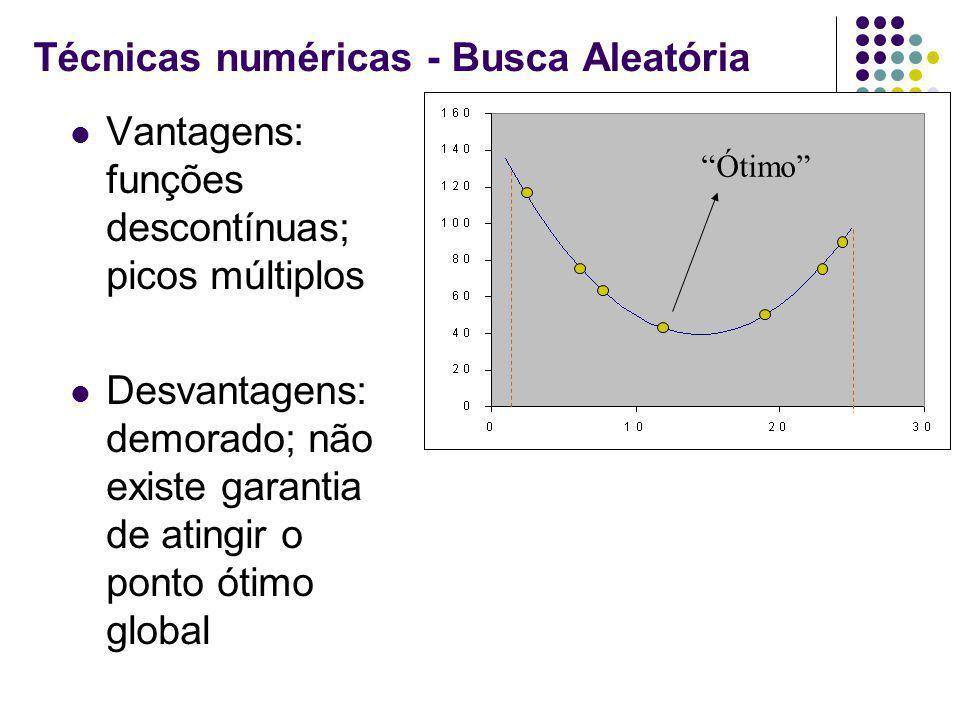 Técnicas numéricas - Busca Aleatória