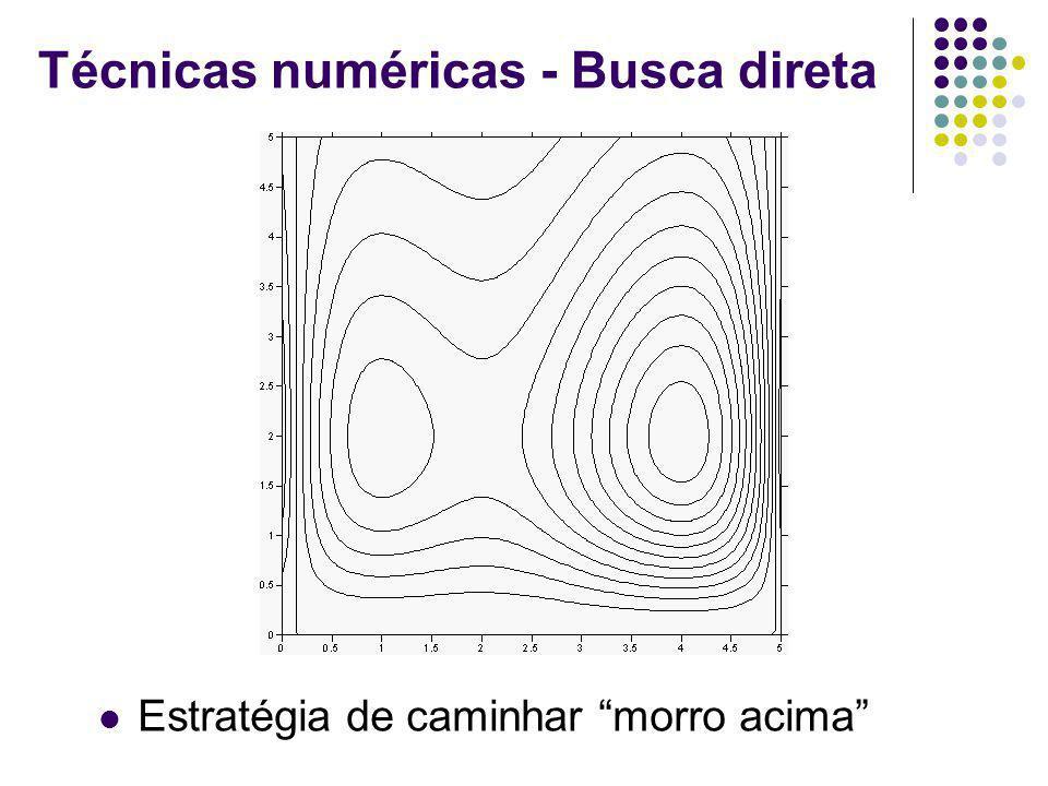 Técnicas numéricas - Busca direta