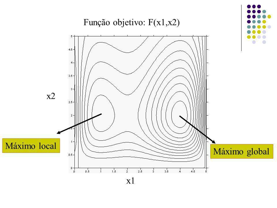 Função objetivo: F(x1,x2)