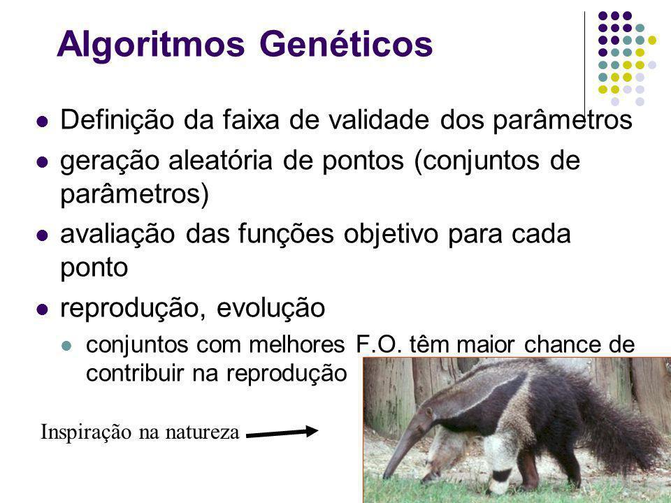 Algoritmos Genéticos Definição da faixa de validade dos parâmetros